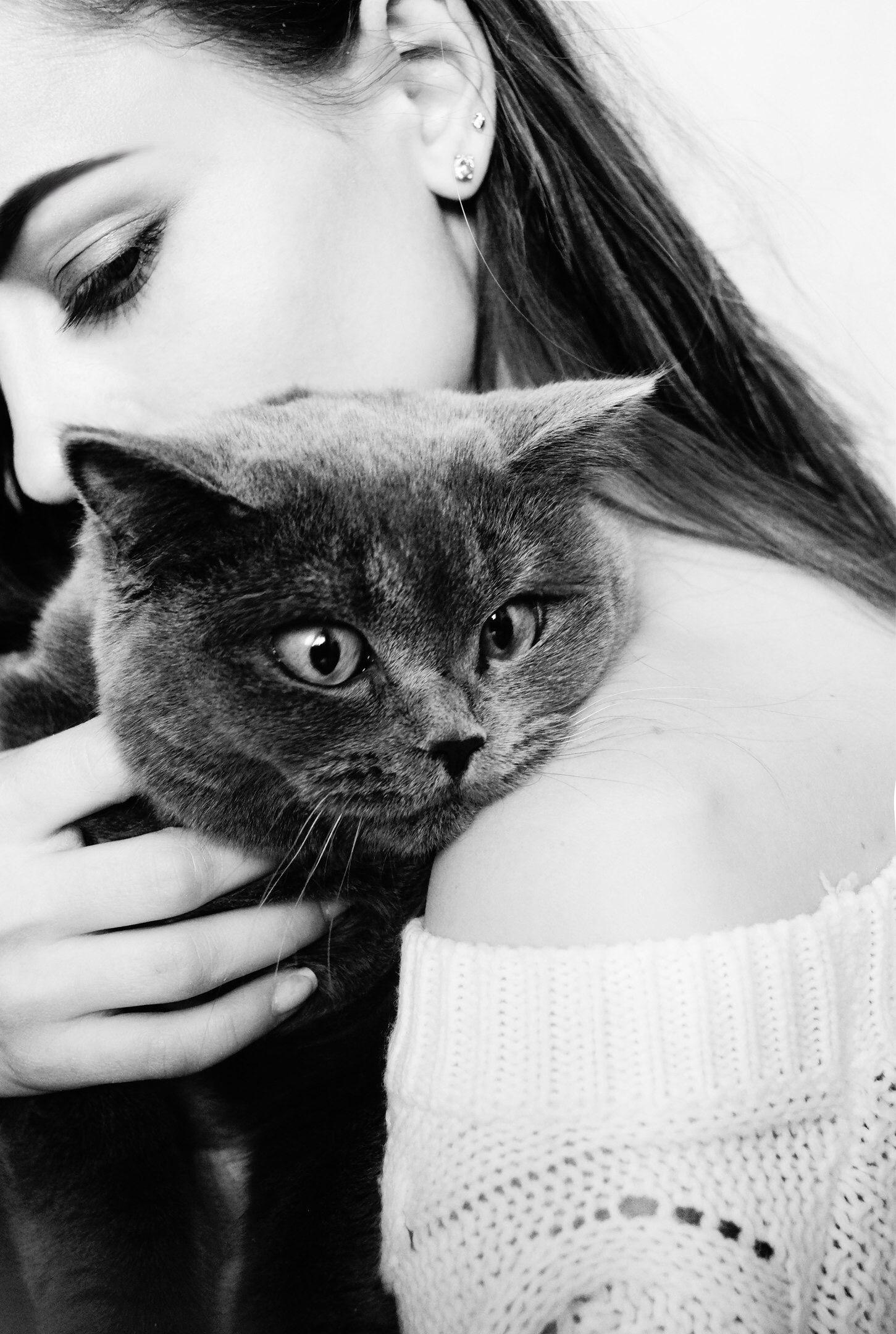 идеи для фотосессии кошек ожерелья, кепки
