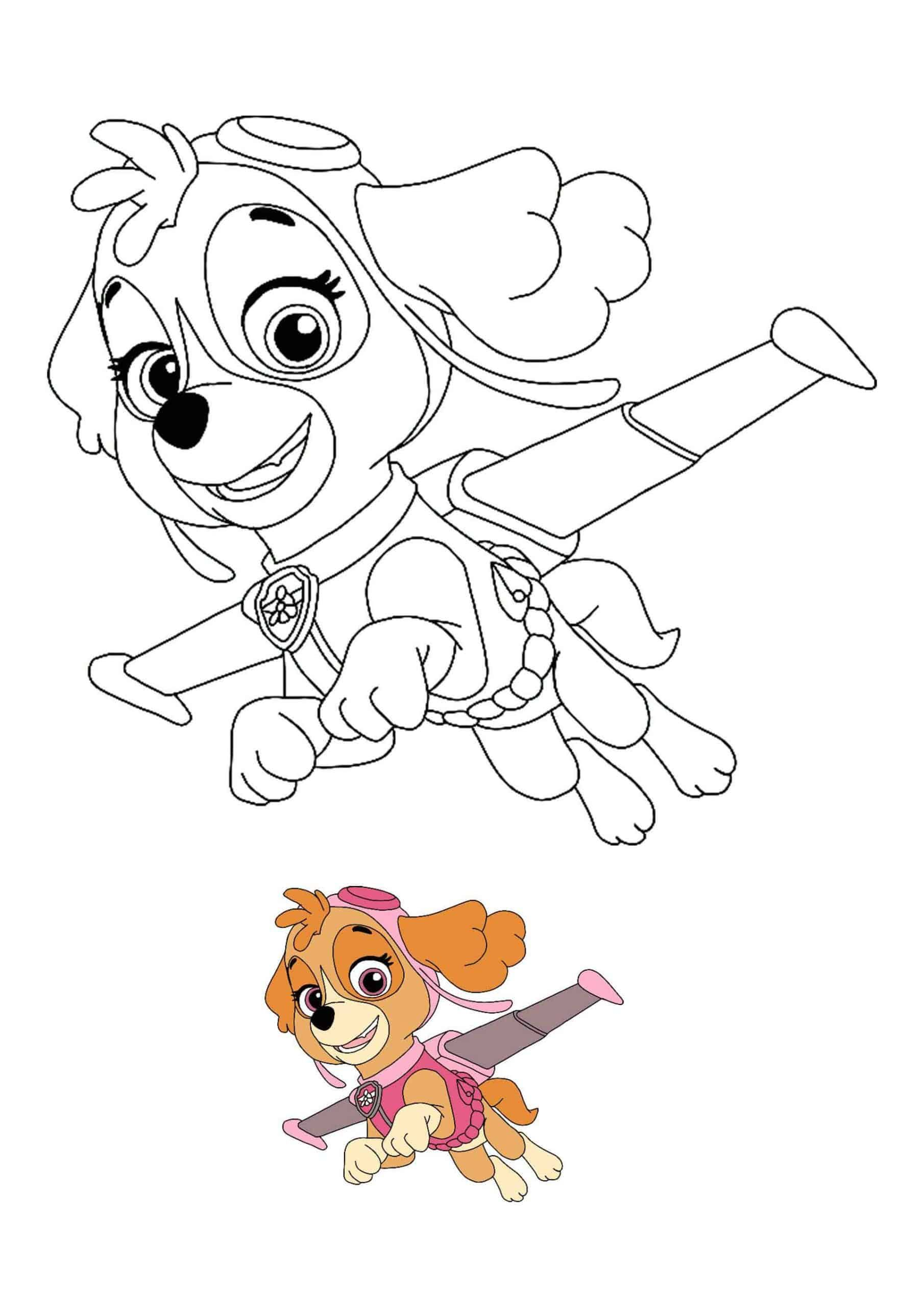 Paw Patrol Skye Coloring Pages  Paw patrol coloring pages, Paw