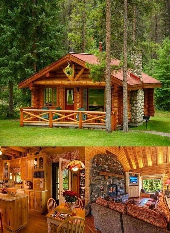 65 Genius Ideas For Your Tiny House Cabin Project In 2020 Tiny House Cabin Log Cabin Homes Small Log Cabin