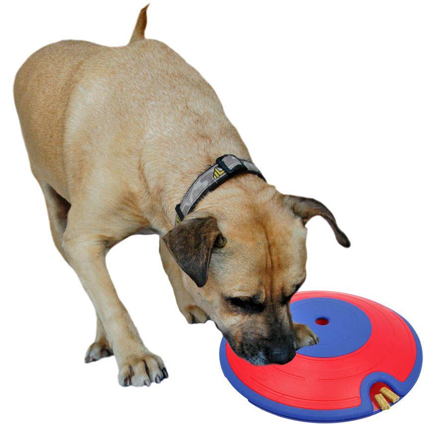 Dog Treat Maze Interactive Toy Dog Puzzles Dog Treat Toys