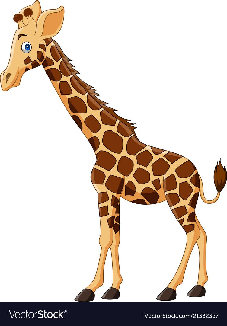 Cartoon Giraffe Isolated On White Background Download A Free Preview Or High Quality Adobe Illust Cartoon Giraffe Baby Animal Drawings Giraffe Cartoon Drawing