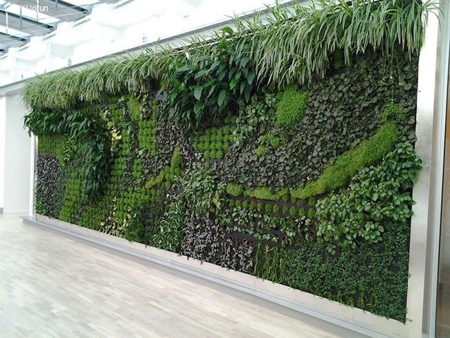 Innred med planter