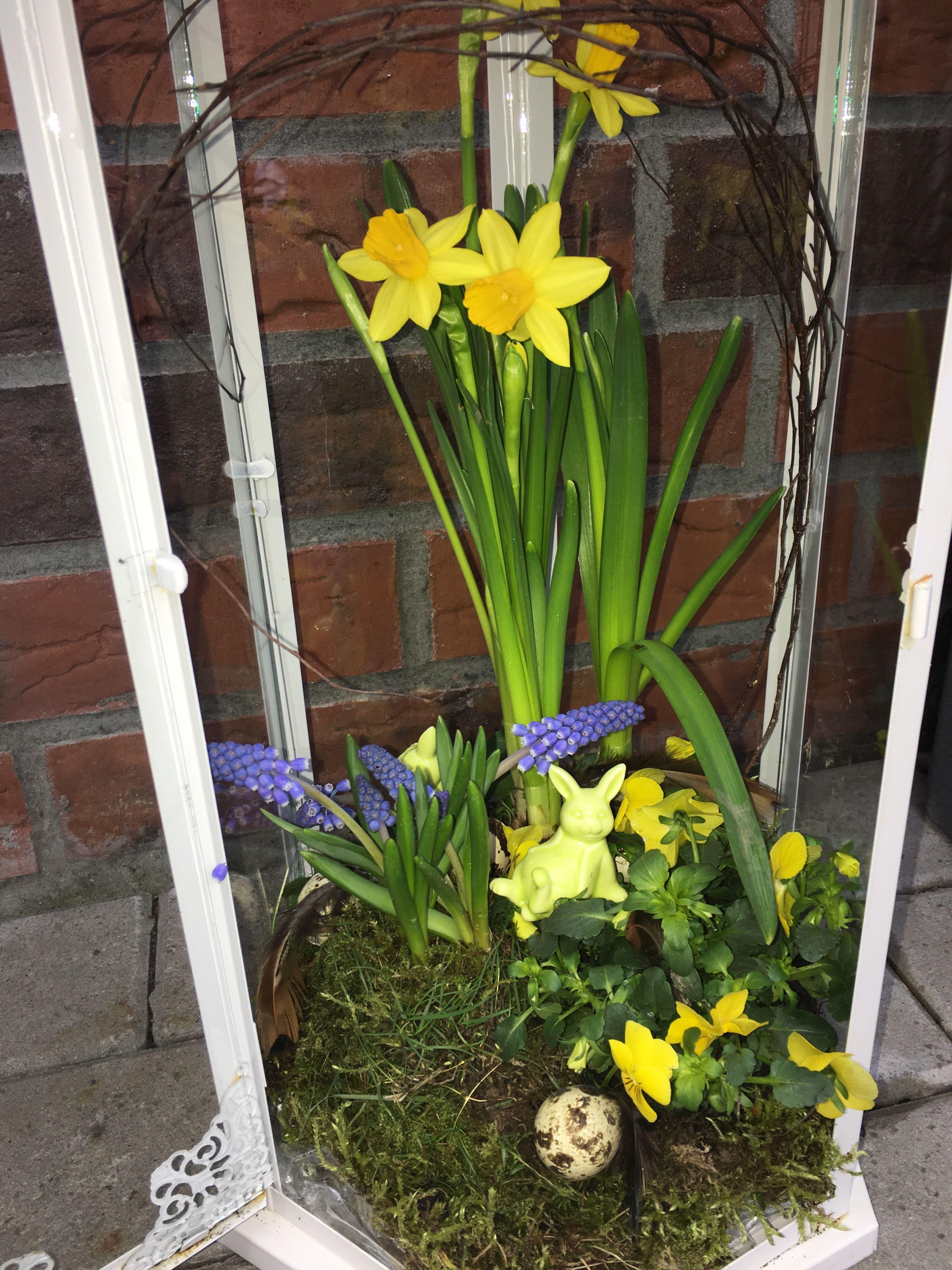 Springtime at home