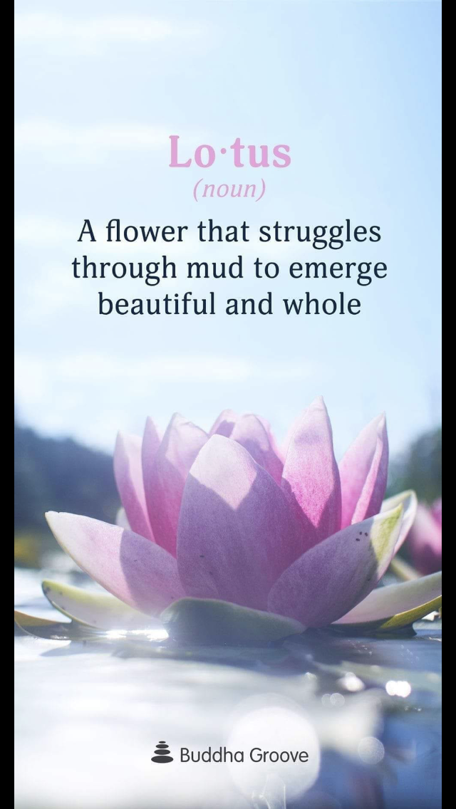 Pin by Dawn Hastings on Inspiration! Lotus flower quote
