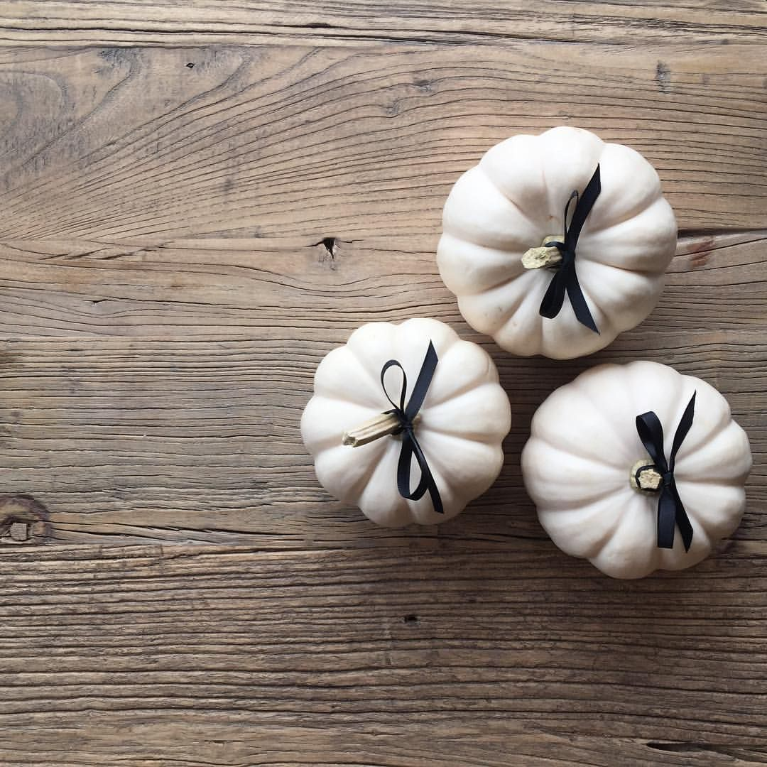"SARAH@HOUSEOFPROPER.COM on Instagram: ""priming the pumps! mini white pumpkins all dressed up - add to every guests seat with a message or monogram - or layer + build for a festive centrepiece - happy thanksgiving"""