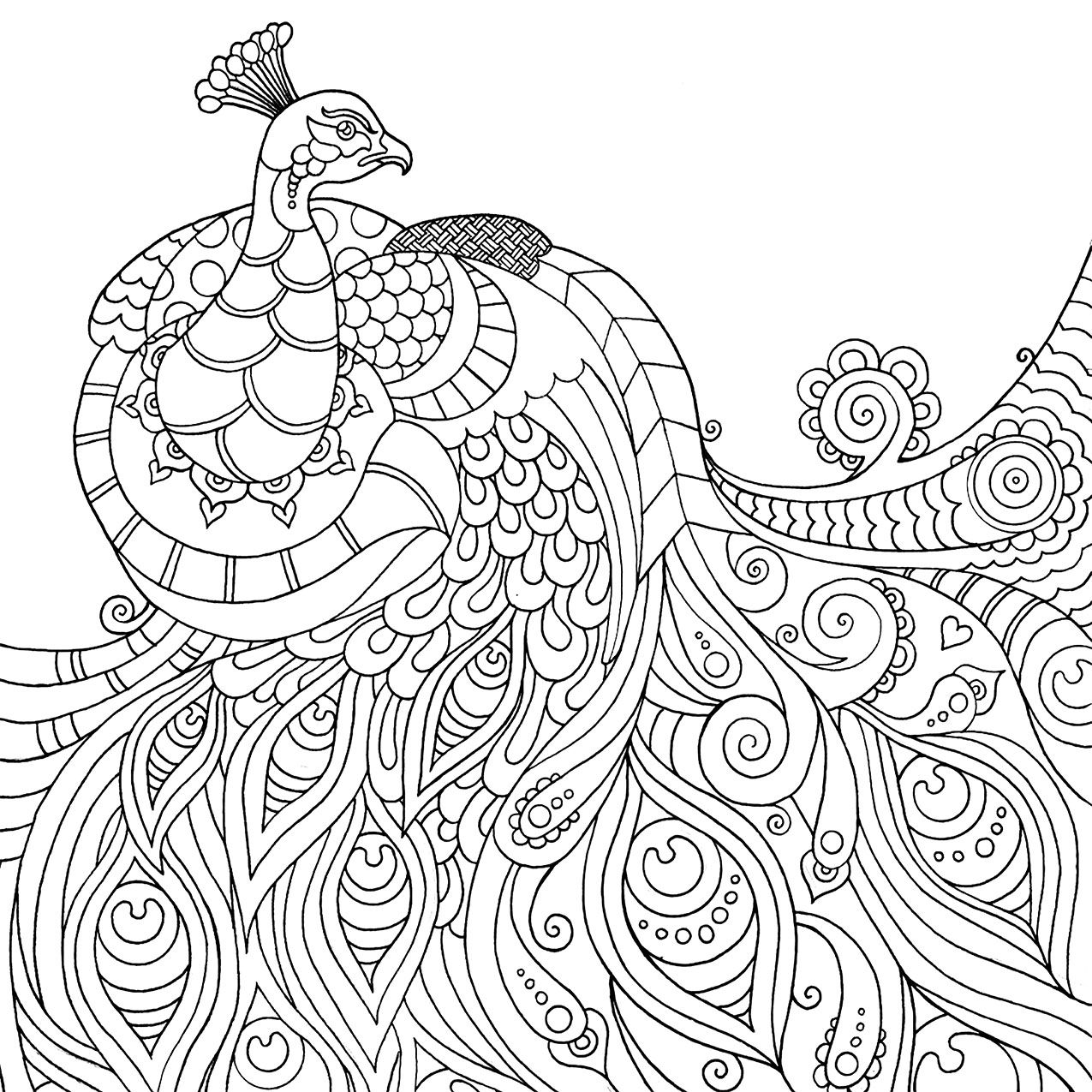 Mindfulness Coloring Pages Best Coloring Pages For Kids In 2020 Peacock Coloring Pages Mandala Coloring Pages Mindfulness Colouring
