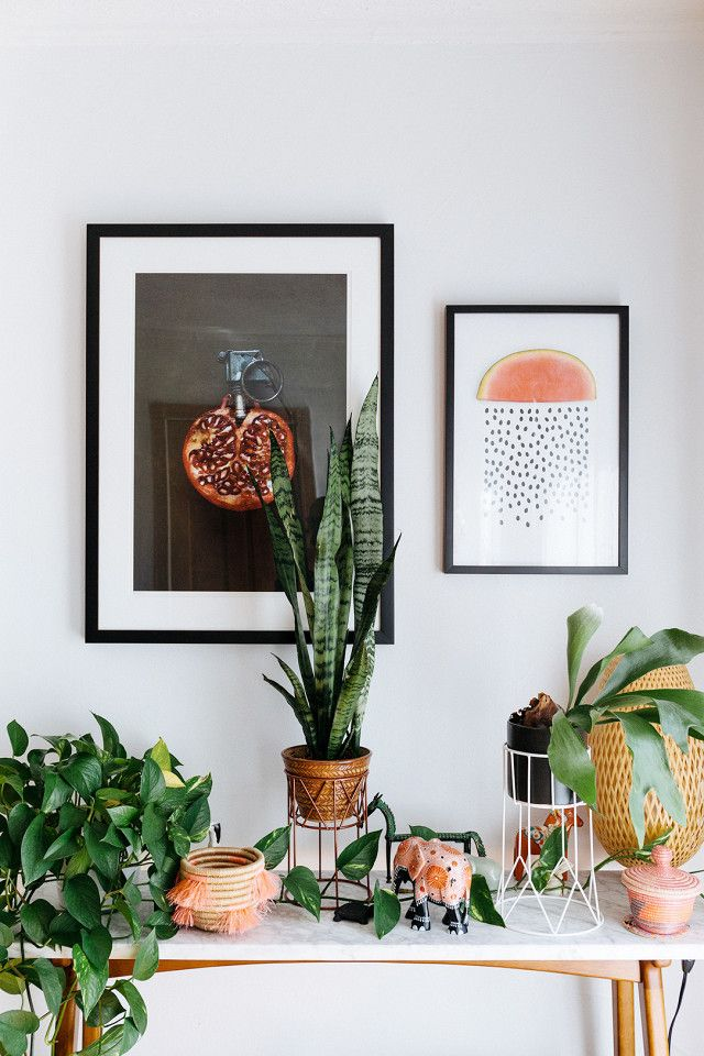 This Is How a Swede Designs a Tiny Brooklyn Apartment Plantas
