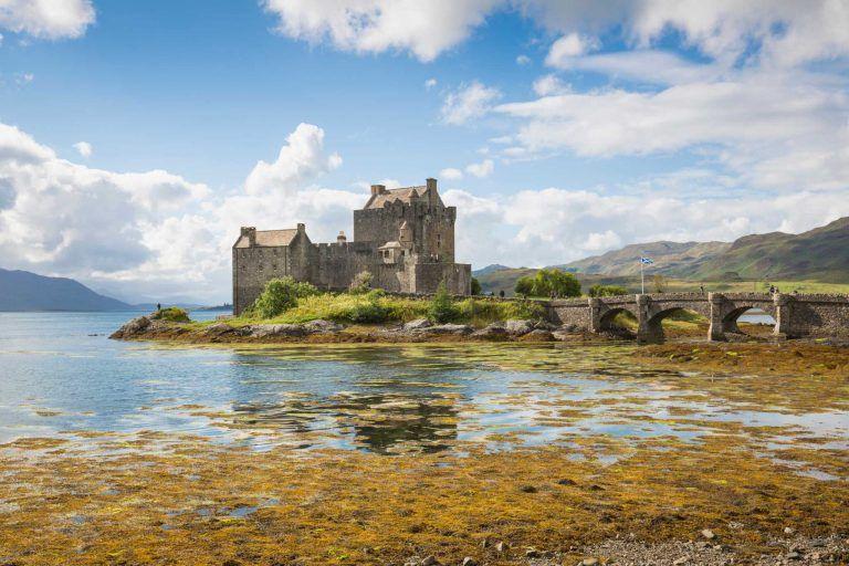 Scottish Wildlife Webcams - See Scotland Virtually   VisitScotland