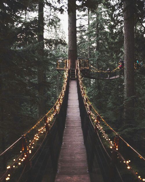 http://weheartit.com/entry/248817641