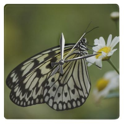 Black and White Nymph #Butterfly Square Wall #Clock $28.10
