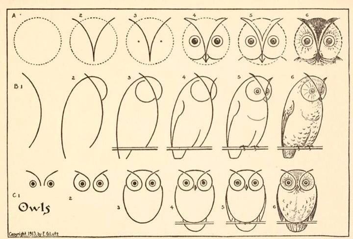 5 How-to-Draw Websites for Kids | Owl drawings, Owl and Drawings