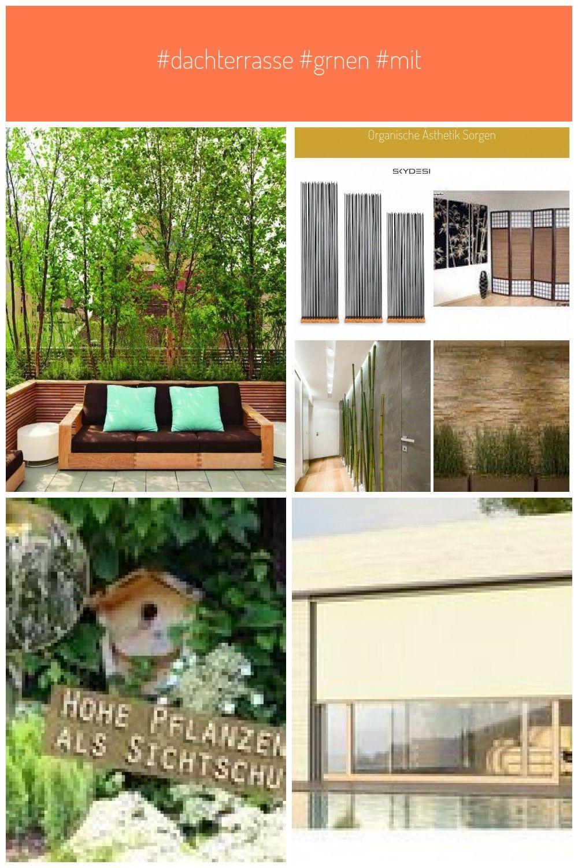 Dachterrasse Grnen Mit Pflanzen Sichtschutz Dachterrasse
