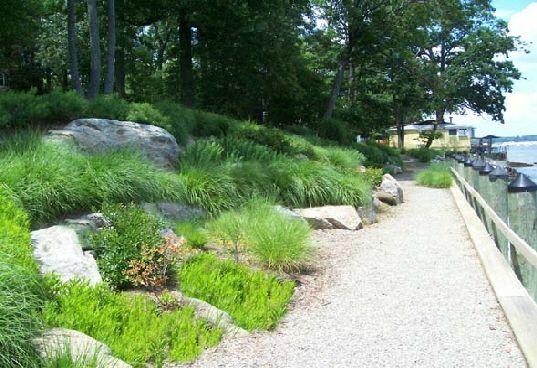 Fine Landscape Buffer Google Search Landscape Architecture Largest Home Design Picture Inspirations Pitcheantrous