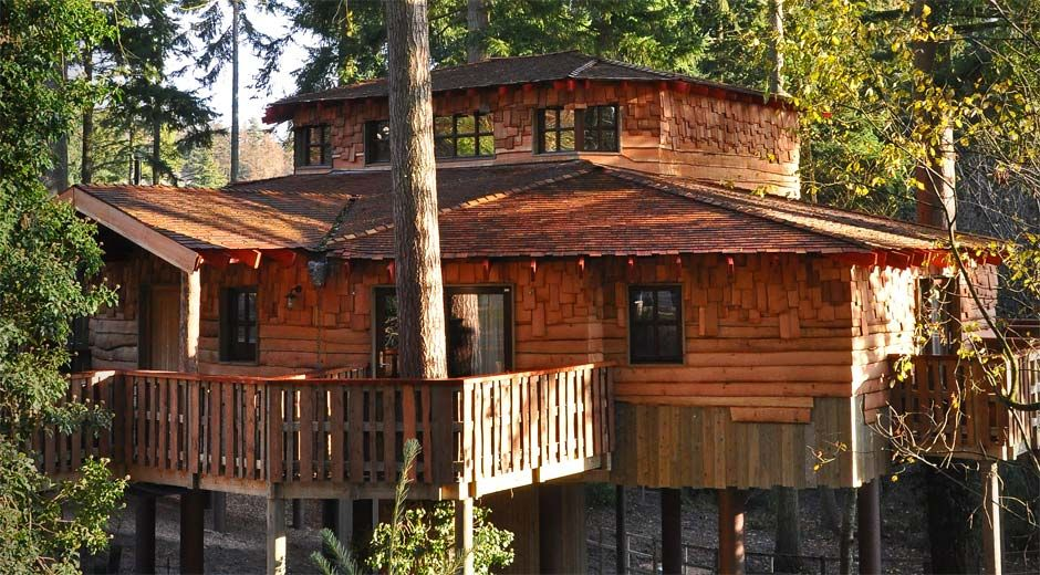 Enjoy A Luxury Break In A Beautiful Woodland Treehouse Tree House House In The Woods House