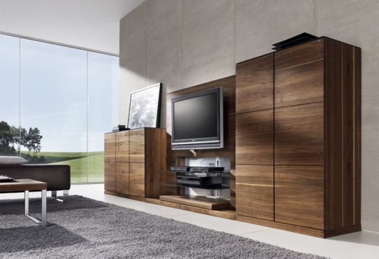 Living Room Closet Design Amusing Mediumdark Woods In Interiors  Tv Furniture Living Room Design Inspiration