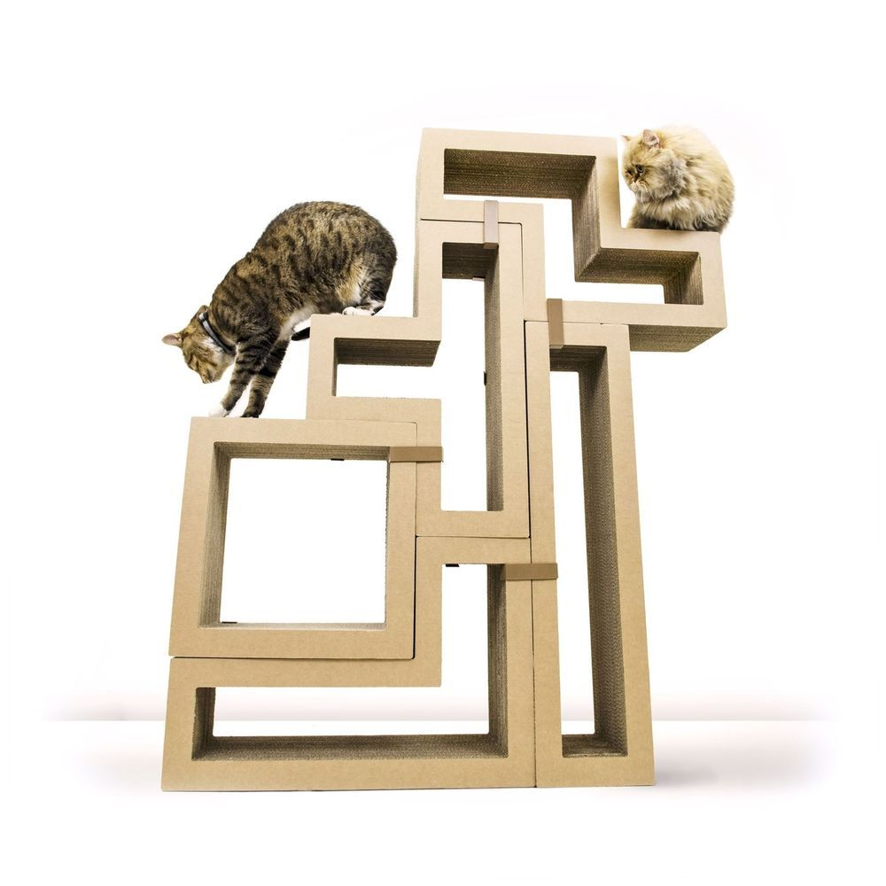 With 5 blocks to build a cat