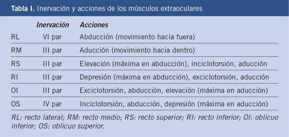 Síndromes MESENCEFÁLICOS | Pinterest | El musculo, Músculos y Acción