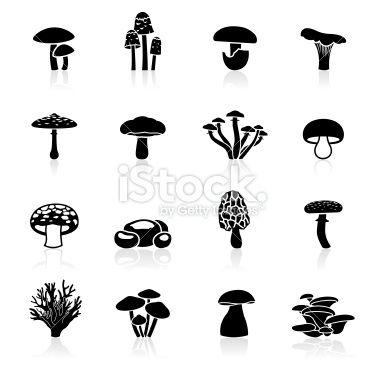 Illustration of different Edible Mushrooms symbols