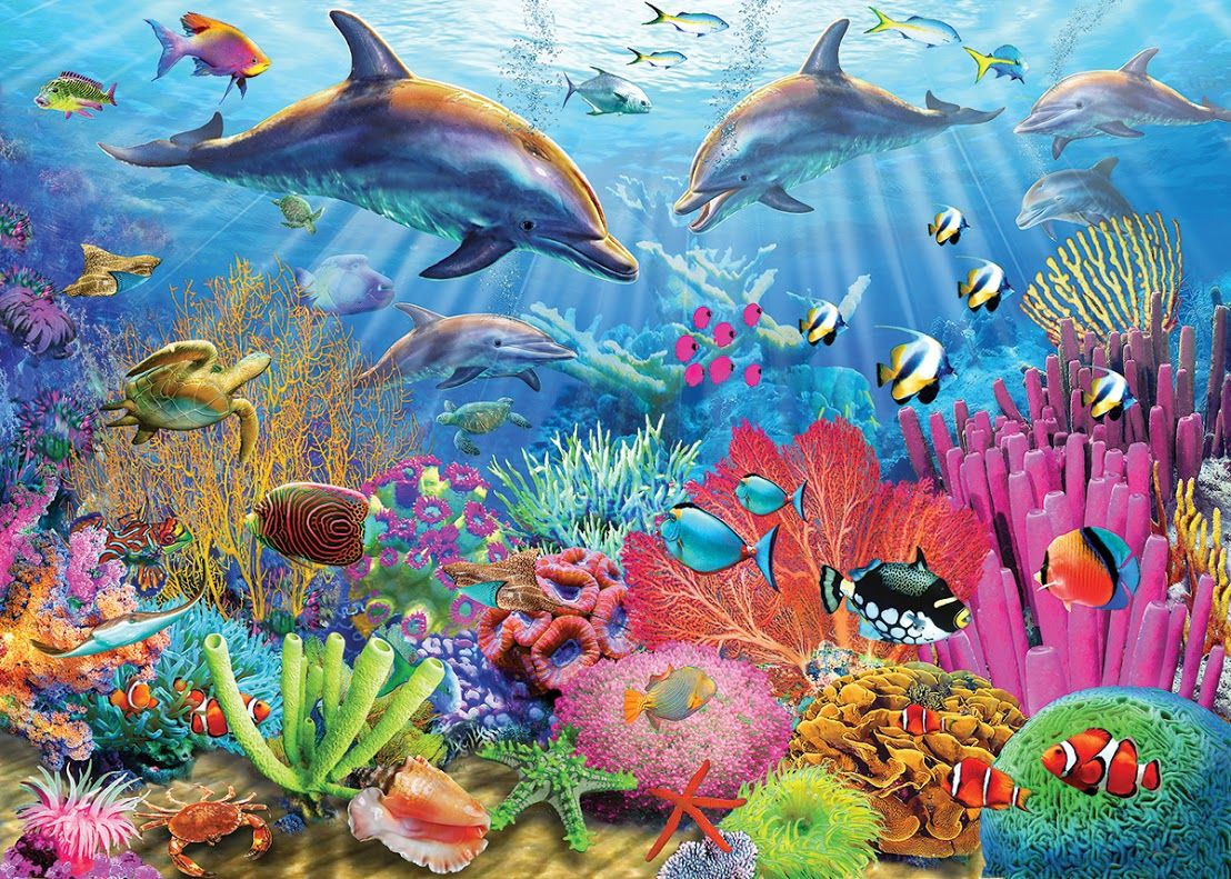 dolphin coral reef puzzles coral reef art underwater painting rh pinterest com