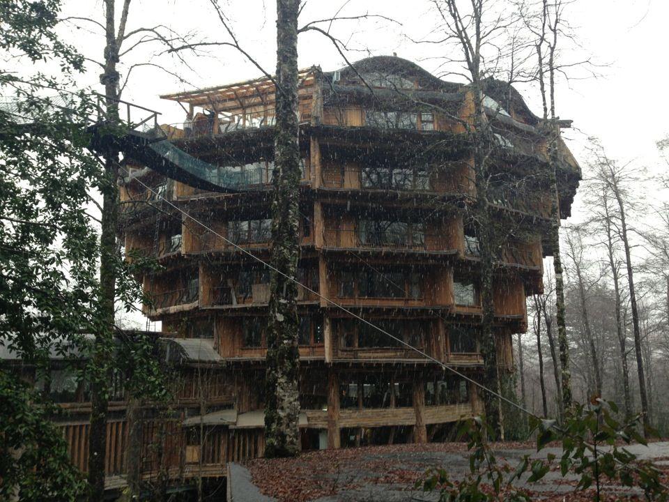 epic treehouse hotel tree life hotel spa treehouse hotel spa rh pinterest com