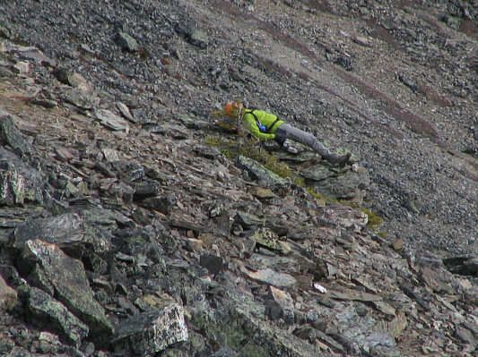 Dead Body On Everest | everest | Mount everest deaths