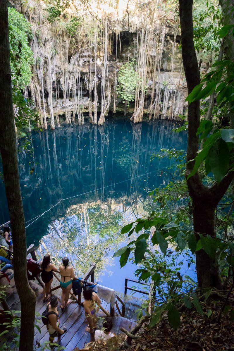 24 incredible cenotes near chichen itza    merida