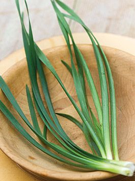 How To Grow Garlic Chives Want To Grow Garlic Chives They Are So Easy And They Make Beautiful Blooms As Well Cli Growing Garlic Garlic Chives Growing Chives