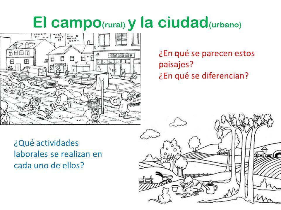 Resultado De Imagen Para Campo Y Ciudad Para Primer Grado Actividades De Geografia Primeros Grados Normas De Clase