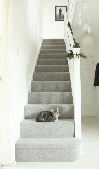 Come dipingere una scala interna stairs escaliers schody carpet stairs hallway carpet i - Come arredare una scala interna ...