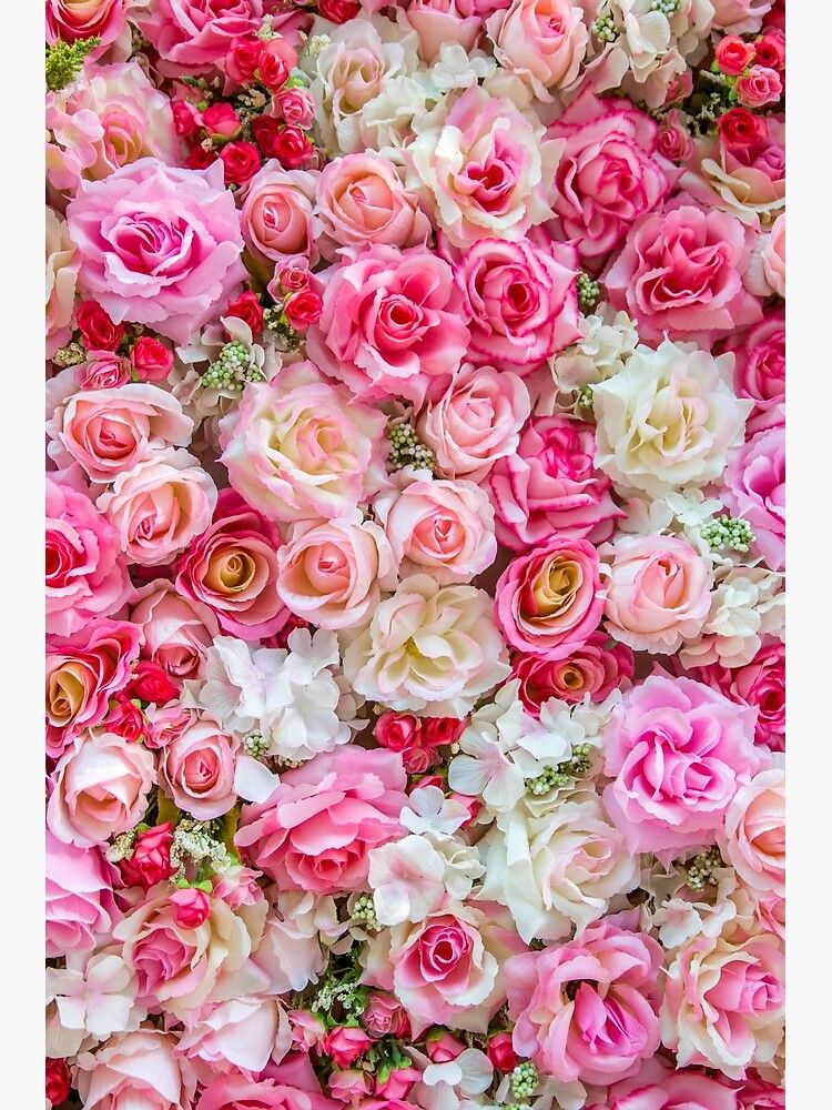 Pink Red Roses Romantic Floral Print Poster in 2020