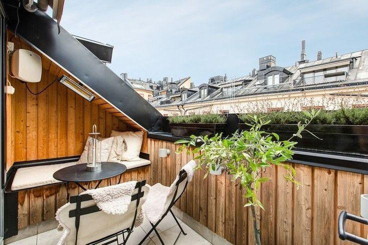 # Kletterpflanzen # Sichtschutz # Balkon #Blumen #Wind - hzrn202023 #balkonblumen