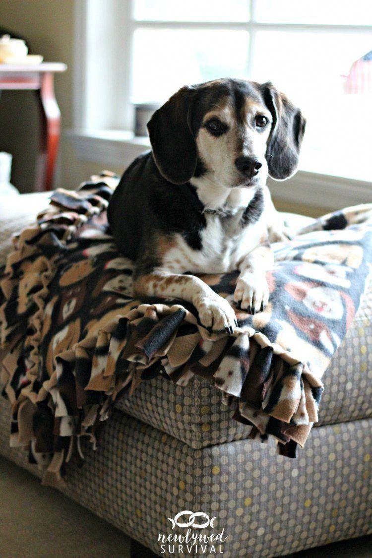 Stufftobuy No Sew Fleece Blanket Diy Dog Blankets No Sew Blankets
