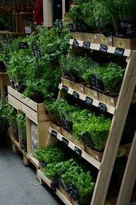 Diy Garden Herb Rack Farmers Market Display Garden Center Displays