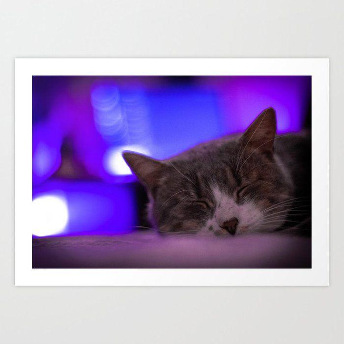 PhotographyArt Art Print by purpled_raccoon #AD , #AD, #AD, #Art, #Print, #purpled_raccoon, #PhotographyArt