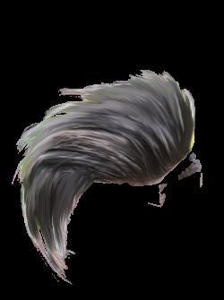 Download Hair Png Hair Png 32904 Download Hair Hair Png Dslr Background Images