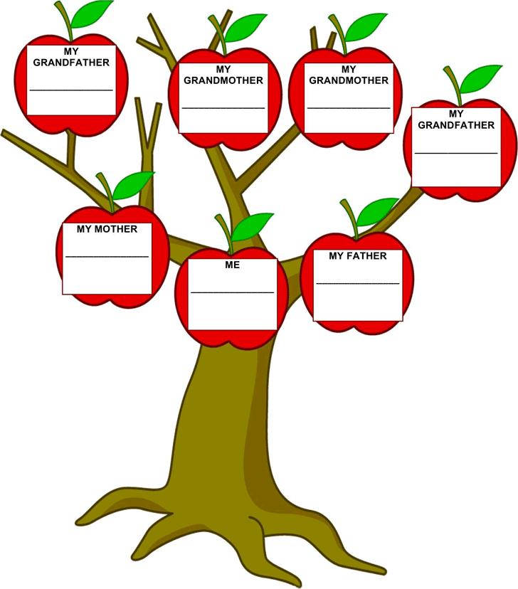 Family Tree Template   Teacher  Classroom    Family