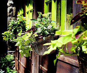 Wicker Window Boxes - Containers from Recycled Materials