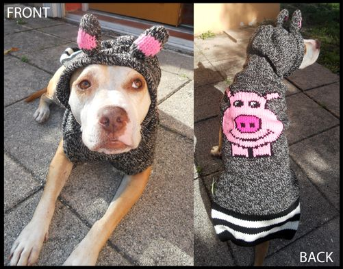 This Little Piggy Hoodie Dog Sweater