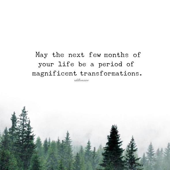 Life Transformation Quote Fresh Start Inspiration Transformation Quotes Fresh Start Quotes