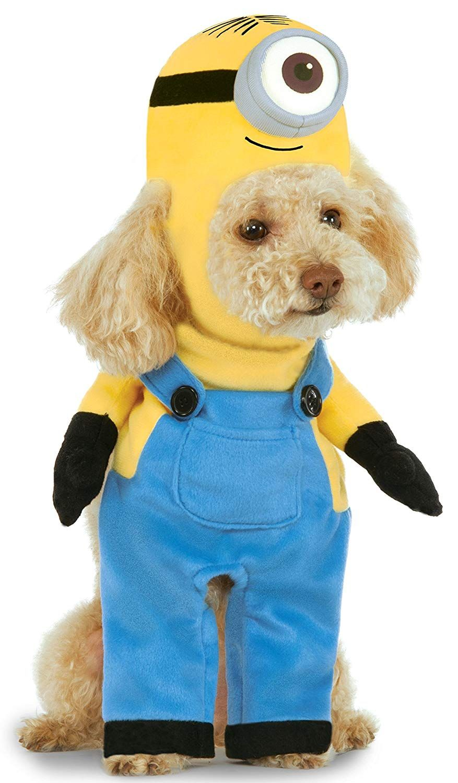 Minion Stuart Arms Dog Suit Cute Animals Minion Dog Costume