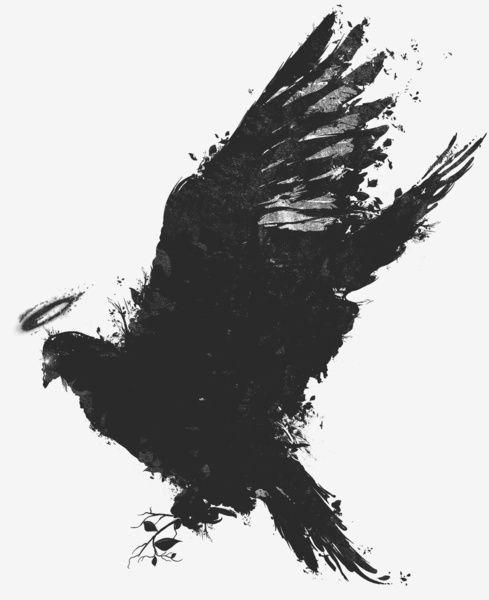 Dark Angel : Robson Borges