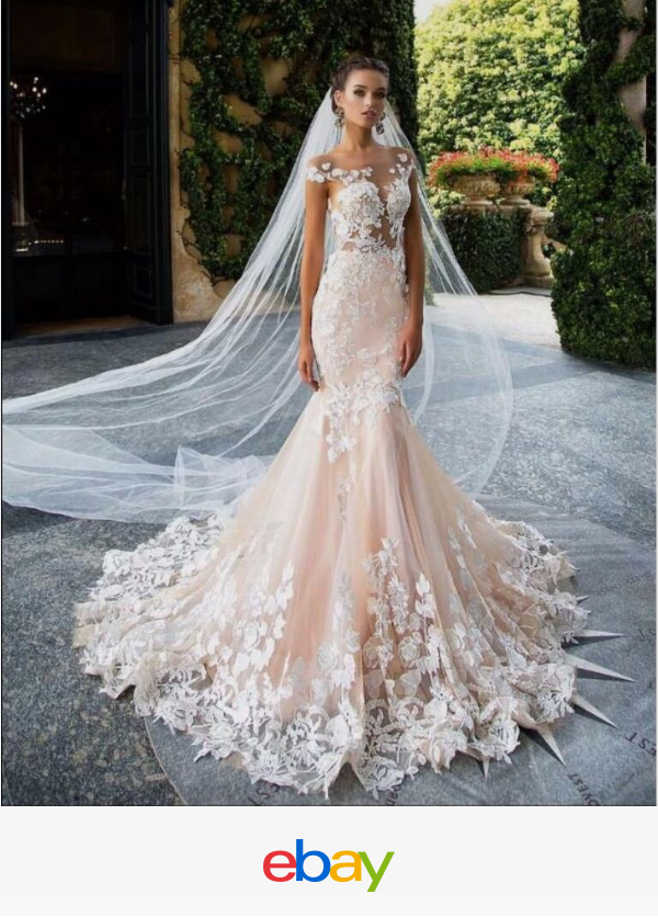 Details About Layers Wedding Bridal Veil Lace White Ivory Cathedral Length Birdcag Edge Bride Wedding Dress Accessories Ball Gowns Wedding Bridal Lace