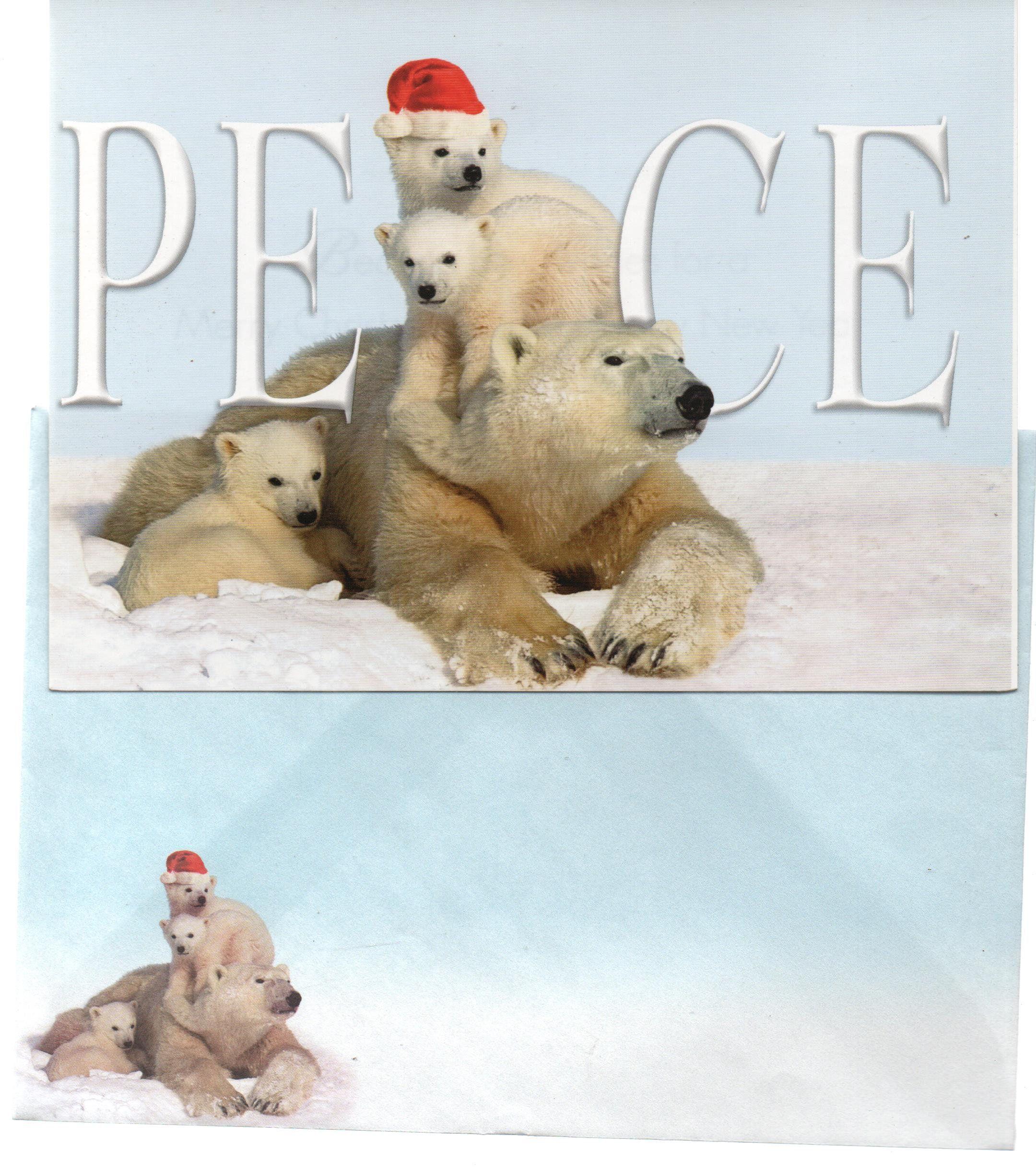 National Wildlife Christmas Cards 2021 Peace Unused Christmas Greeting Card Polar Bears C1990s Etsy In 2021 Christmas Greeting Cards Christmas Greetings Vintage Christmas Cards