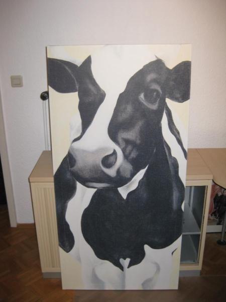 403 Access Forbidden Kuh Bilder Kuhe Malen Einfache Aquarellbilder