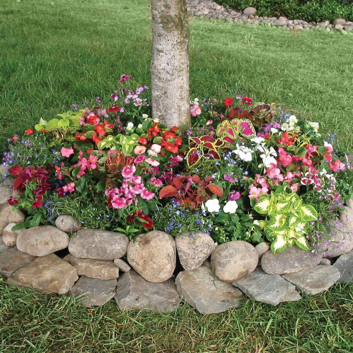 Browse This Website Loaded With Details On Outdoor Yard