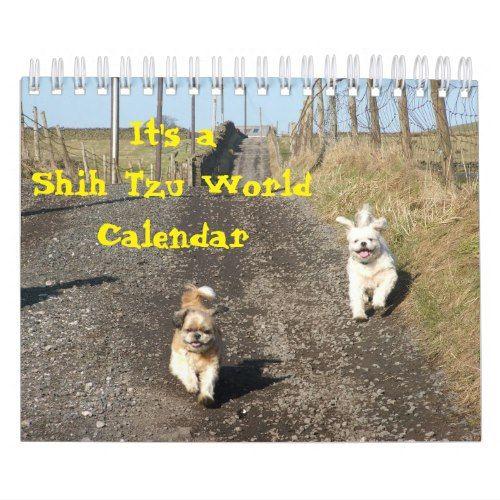 Its A Shih Tzu World Calendar 2018 Calendars Pinterest