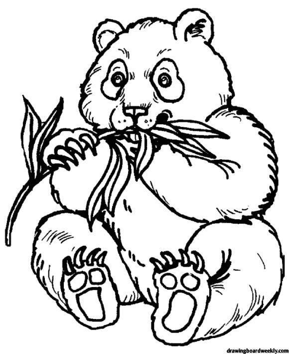 malvorlagen panda free | malvorlagen, pandas, kostenlose