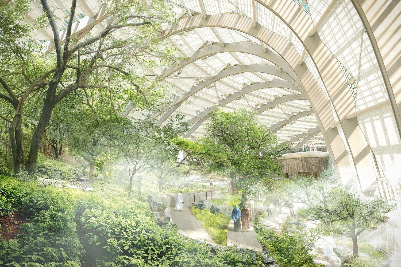 Oman Botanic Gardens To Be The Largest On Earth Botanical