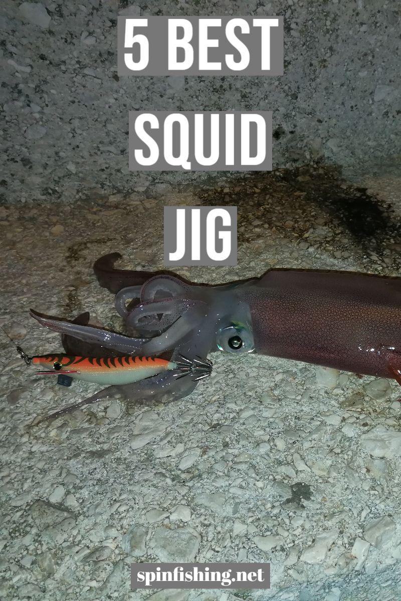 5 Best Squid Jig (With images) | Salt water fishing, Salt ...