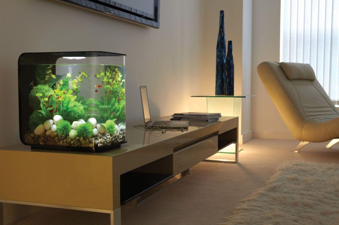 Biorb Flow Black 15 Litre Mcr Light Aquarium Ideeen Aquarium Aquaria